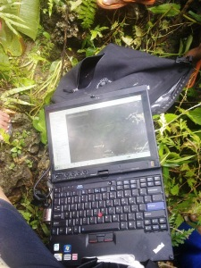 Thinkpad in the jungle
