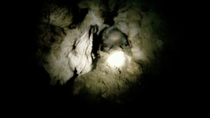 Dry cave being explored