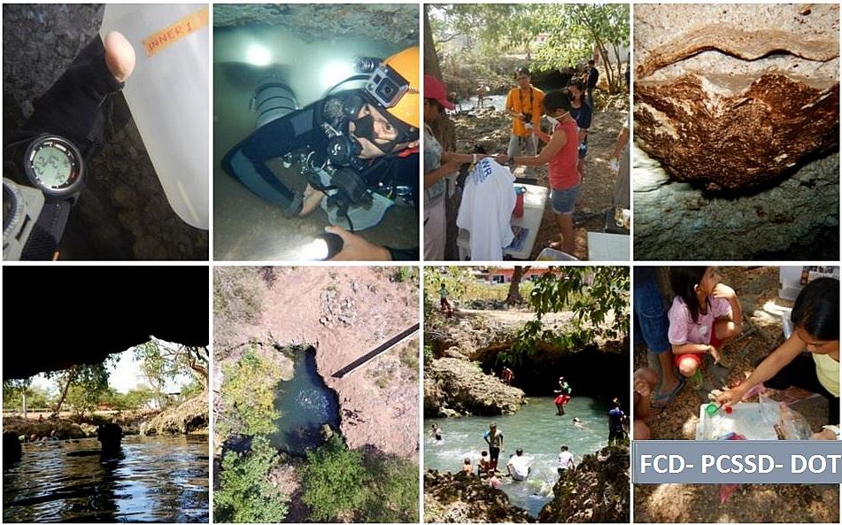 Capture_FCD collage